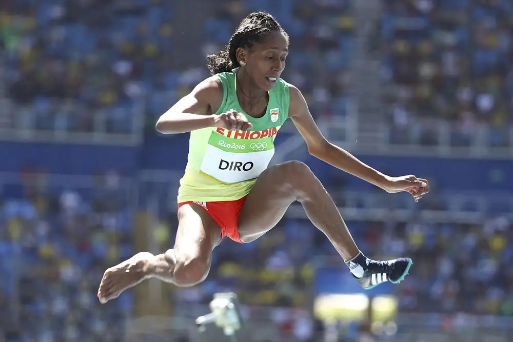 The Cinderella Of Rio
