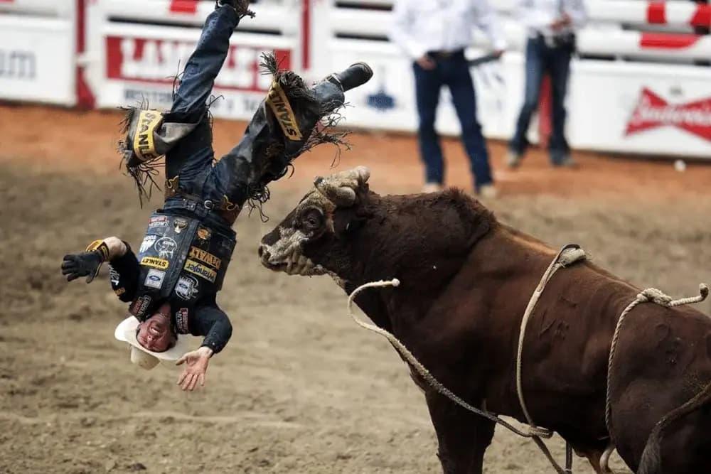 Cowboy Getting Bullied