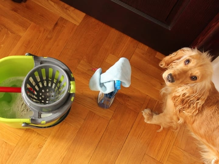 Cleaning Supplies And Detergents