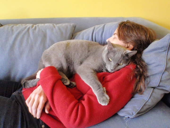 Cats Do Strange Things When They Love You, And Here Are Some Of Them...