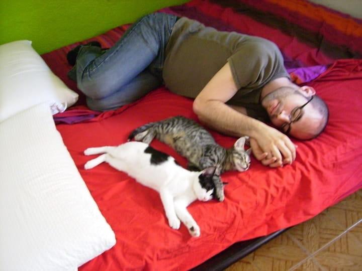 They Sleep Next To You