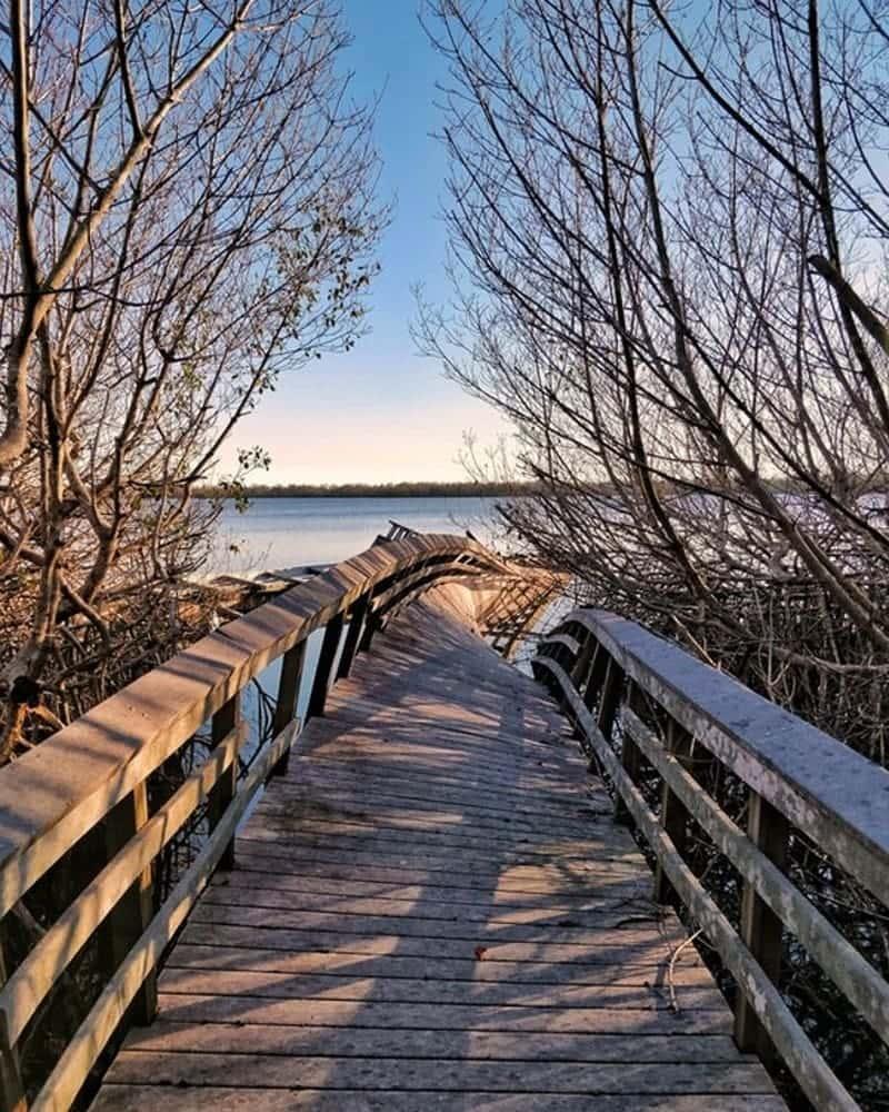 Stroll On The Boardwa....